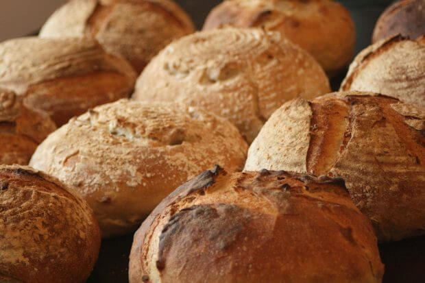 pâini aurii cu maia